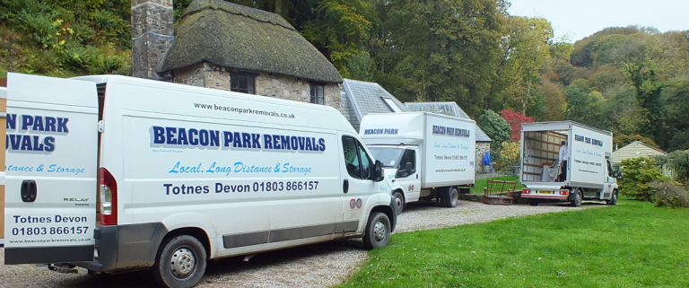 picture of beacon park removals